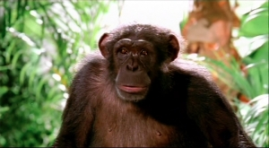 PANASONIC 'Chimp'